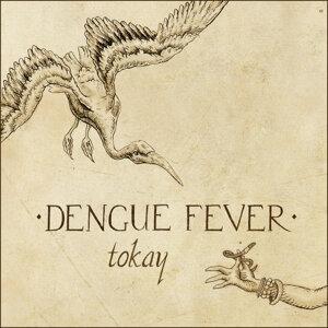 Dengue Fever 歌手頭像
