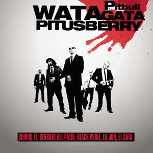 Pitbull Feat. Lil Jon, Sensato, Black Point & El Cata 歌手頭像
