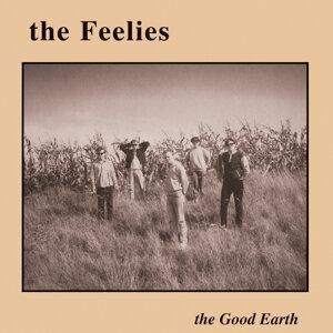 The Feelies (菲里斯合唱團)