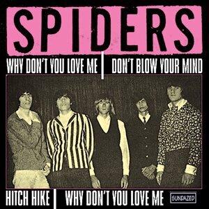 Spiders 歌手頭像