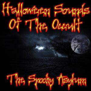 The Spooky Asylum 歌手頭像