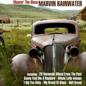 Marvin Rainwater