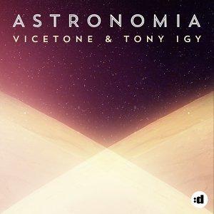 Vicetone, Tony Igy 歌手頭像