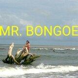 Mr. Bongoe