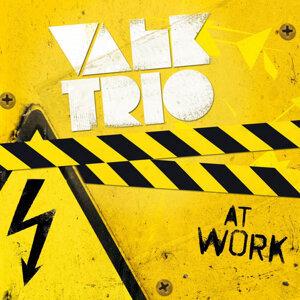 Valk Trio Foto artis