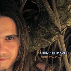 André Demarco Foto artis