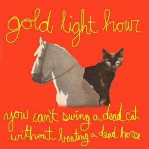 Gold Light Hour Foto artis