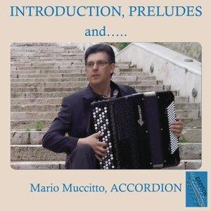 Mario Muccitto Foto artis