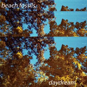 Beach Fossils 歌手頭像
