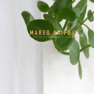 Mareo Akifuji Foto artis