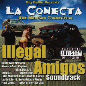Illegal Amigos Foto artis