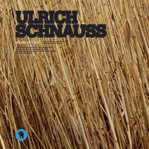 Ulrich Schnauss 歌手頭像