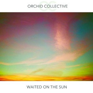 Orchid Collective Foto artis