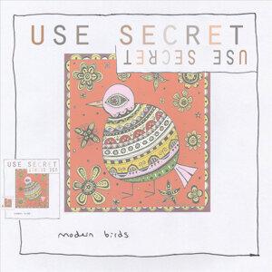 Use Secret Foto artis