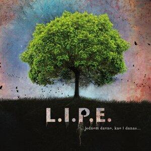 L. I. P. E. Foto artis