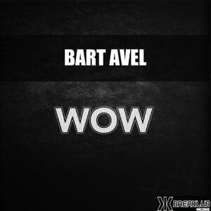 Bart Avel Foto artis