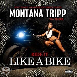 Montana Tripp Foto artis