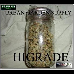 Urban Garden Supply Foto artis