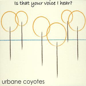Urbane Coyotes Foto artis