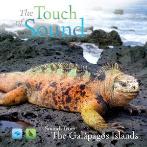 The Touch of Sound Foto artis