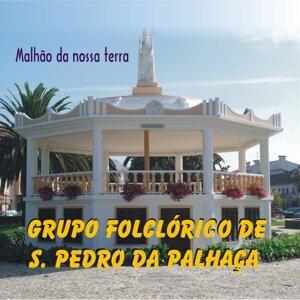 Grupo Folclórico de S. Pedro da Palhaça Foto artis