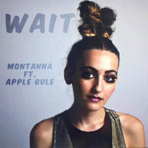 Montanna Foto artis