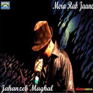 Jahanzeb Mughal Foto artis