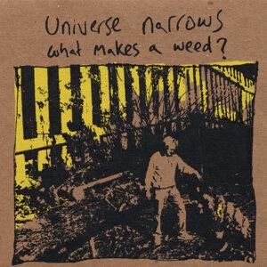 Universe Narrows Foto artis
