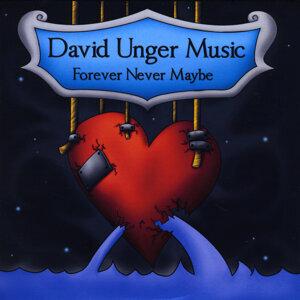 David Unger Music Foto artis