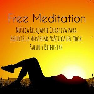 Instrumental Music Academy & Nature Sounds & Daily Meditation Music Society Foto artis