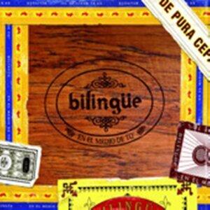 Bilingüe Foto artis
