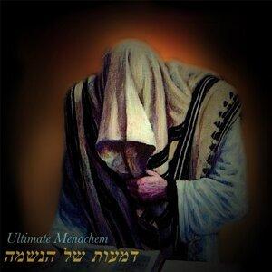 Ultimate Menachem Foto artis