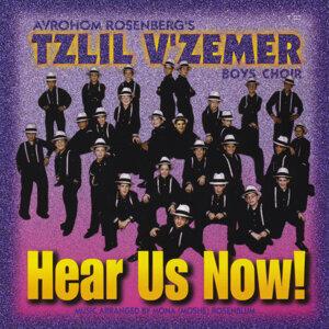 Tzlil V'zemer Boys Choir Foto artis