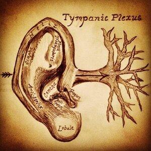 Tympanic Plexus Foto artis