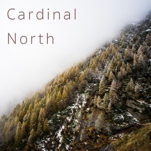 Cardinal North Foto artis