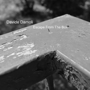Davide Damoli Foto artis