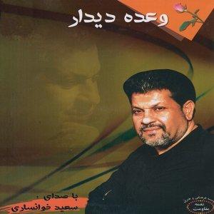 Saeed Khansari Foto artis