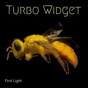 Turbo Widget Foto artis