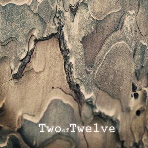 Two of Twelve Foto artis