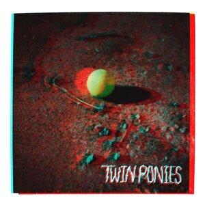 Twin Ponies Foto artis