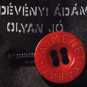 Dévényi Ádám Foto artis