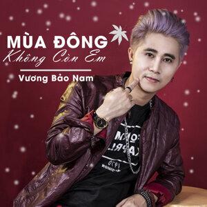 Vương Bảo Nam Foto artis