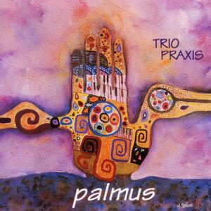 Trio Praxis Foto artis