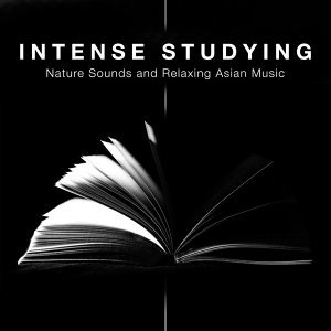 Nature Sounds Radio & Rain Sounds & Reading and Studying Music Foto artis