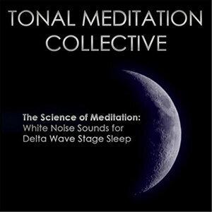 Tonal Meditation Collective Foto artis