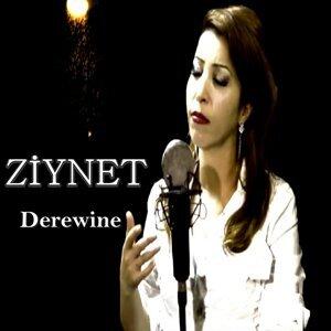 Ziynet Foto artis