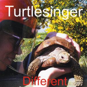 Turtlesinger Foto artis