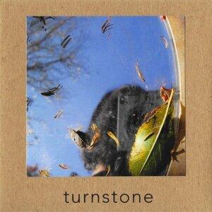 Turnstone Foto artis