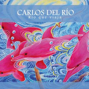 Carlos del Río Foto artis