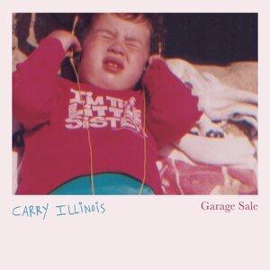 Carry Illinois Foto artis